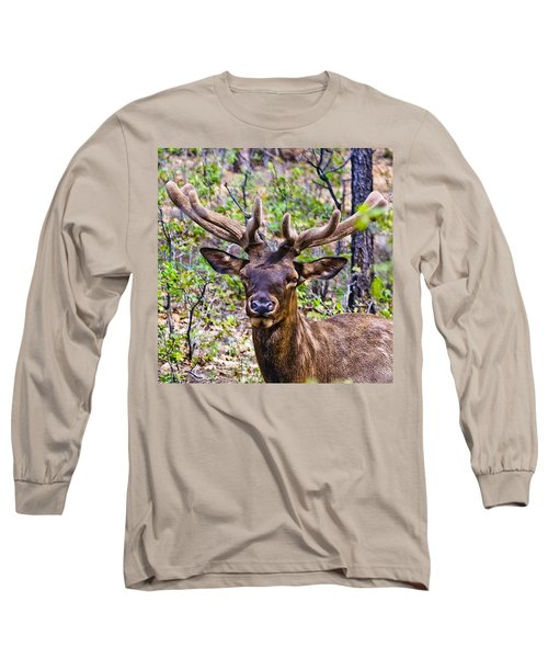 Long Sleeve T-Shirt featuring the photograph Up Close And Personal With An Elk by Bob and Nadine Johnston