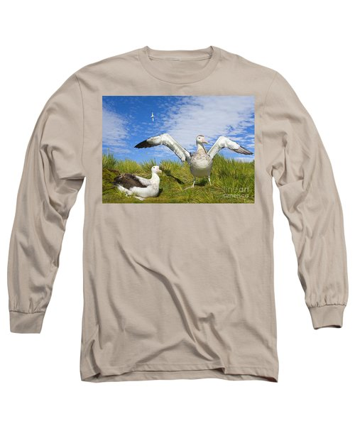 Wandering Albatross Courting  Long Sleeve T-Shirt