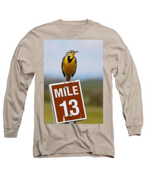 Western Meadowlark On The Mile 13 Sign Long Sleeve T-Shirt by Karon Melillo DeVega