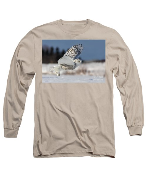 White Angel - Snowy Owl In Flight Long Sleeve T-Shirt by Mircea Costina Photography