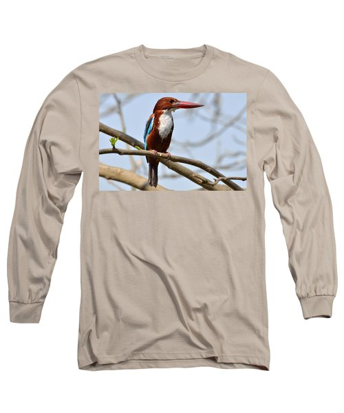 White Breasted Kingfisher Long Sleeve T-Shirt by Fotosas Photography