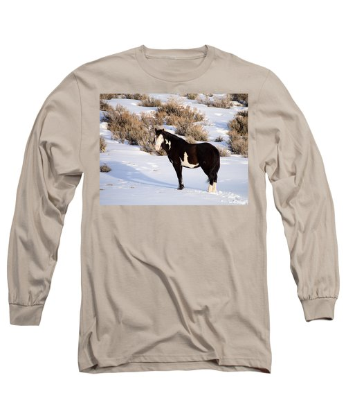 Wild Horse Stallion Long Sleeve T-Shirt