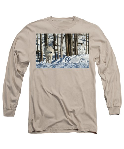 Long Sleeve T-Shirt featuring the photograph Winter Arctic Wolf by Wolves Only