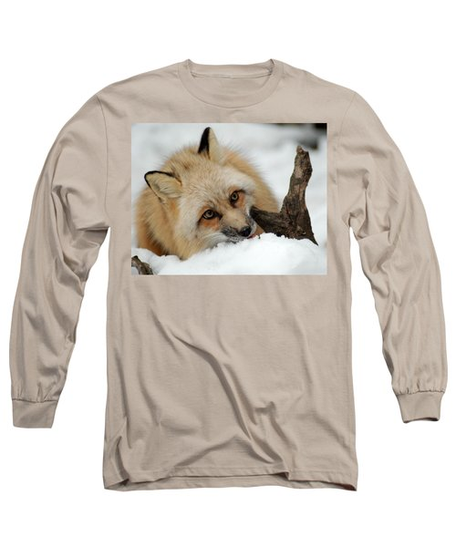 Winter Fox 2 Long Sleeve T-Shirt by Richard Bryce and Family