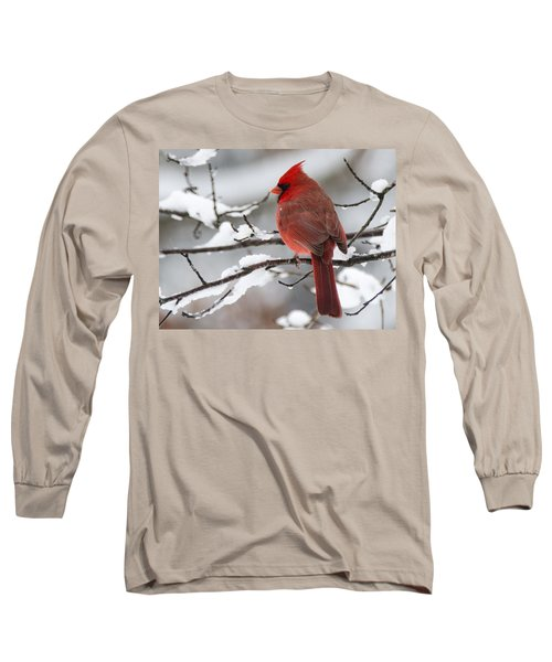 Winter In Red Long Sleeve T-Shirt