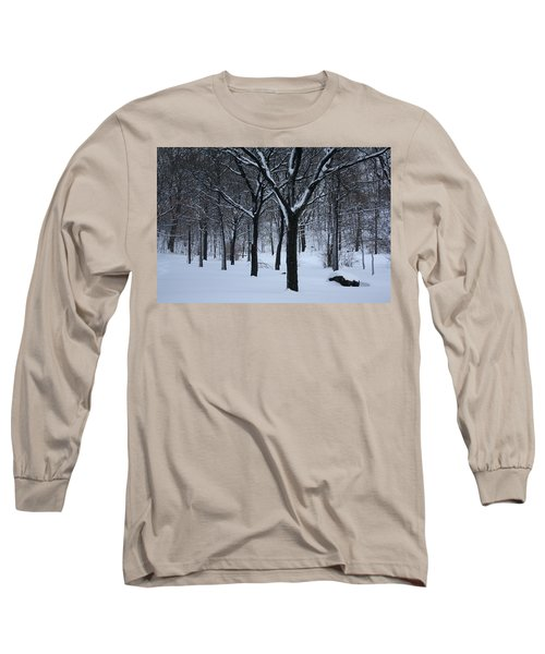 Long Sleeve T-Shirt featuring the photograph Winter In The Park by Dora Sofia Caputo Photographic Art and Design
