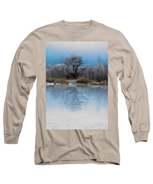 Winter Taking Hold Long Sleeve T-Shirt by Fran Riley