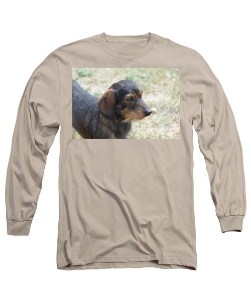 Wire Haired Daschund Long Sleeve T-Shirt