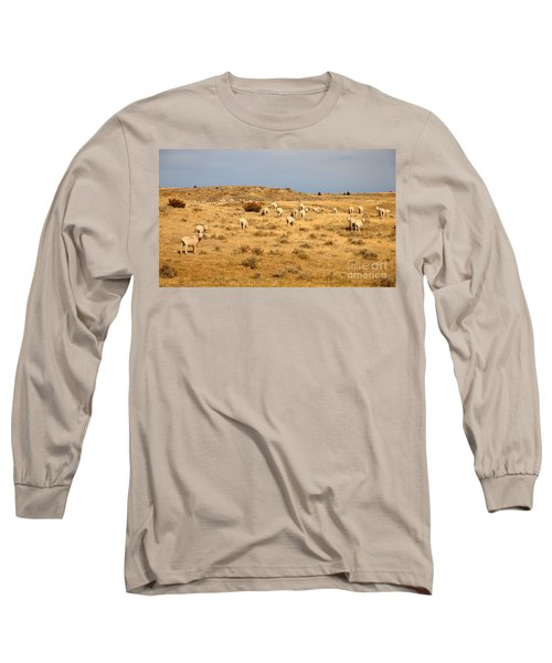 Wool You Sheep With Me Long Sleeve T-Shirt