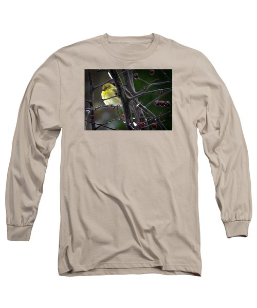 Yellow Finch Long Sleeve T-Shirt by Karen Wiles