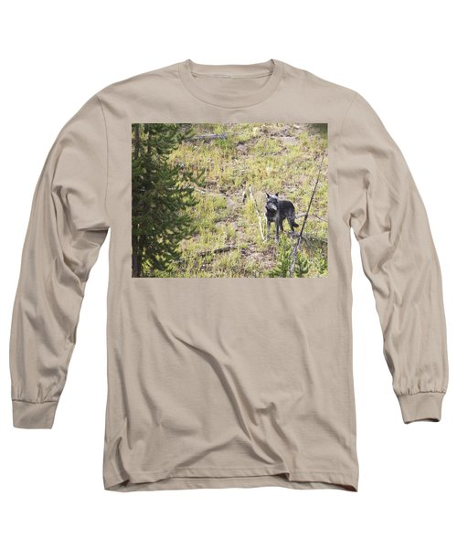 Long Sleeve T-Shirt featuring the photograph Yellowstone Wolf by Belinda Greb