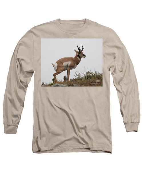 Antelope Critiques Photography Long Sleeve T-Shirt