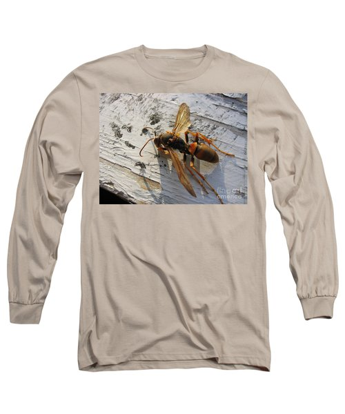 Apache Red Wasp Long Sleeve T-Shirt by Mark Robbins