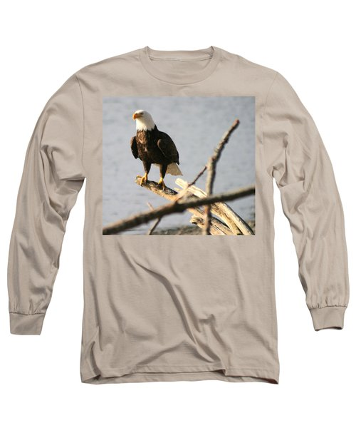 Long Sleeve T-Shirt featuring the photograph Bald Eagle On Driftwood by Kym Backland