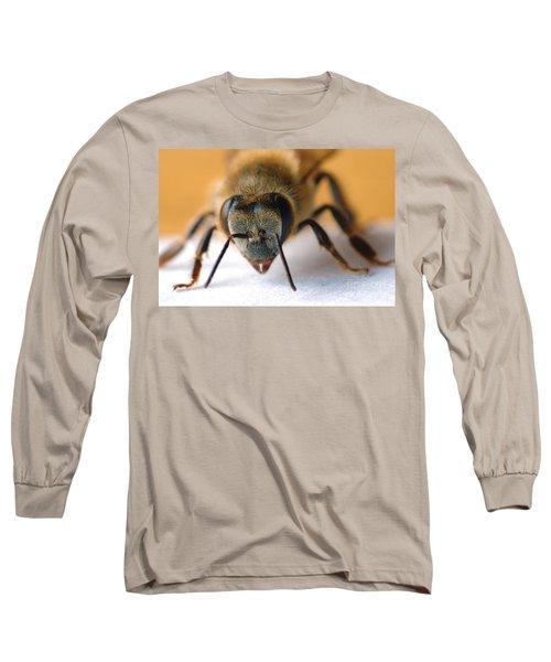 Bee In Macro 4 Long Sleeve T-Shirt