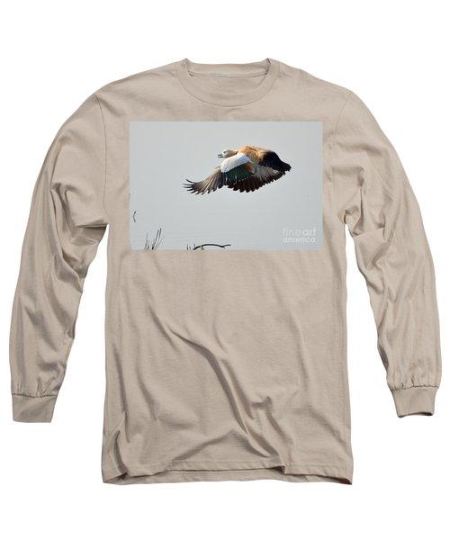 Brahminy Shelduck Long Sleeve T-Shirt