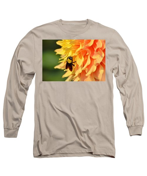 Bumblebee Long Sleeve T-Shirt by Fotosas Photography