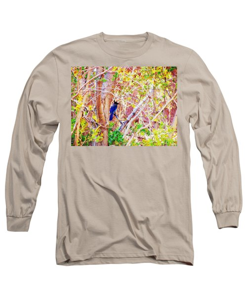 Canyon Jay  Long Sleeve T-Shirt by Clarice  Lakota