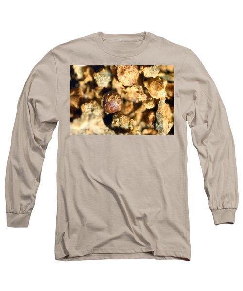 Cretaceous Meteorite Long Sleeve T-Shirt