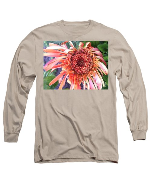 Daisy In The Wind Long Sleeve T-Shirt