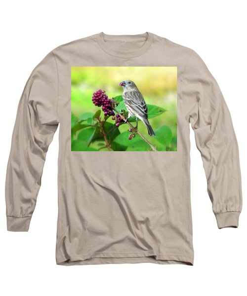 Finch Eating Beautyberry Long Sleeve T-Shirt