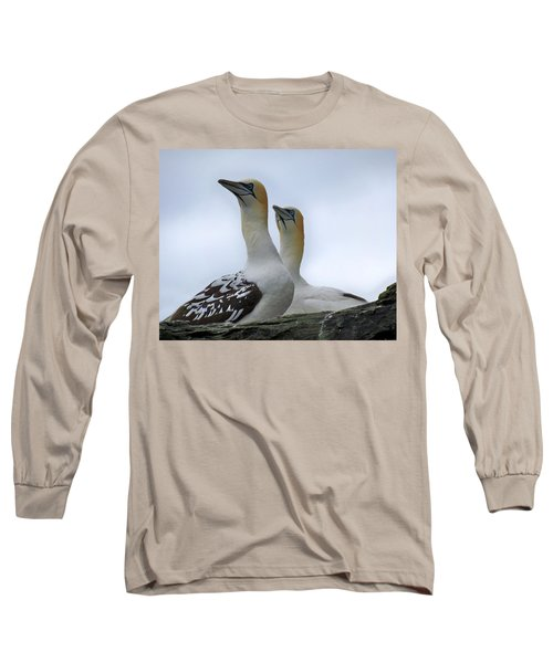 Long Sleeve T-Shirt featuring the photograph Gannets by Lynn Bolt
