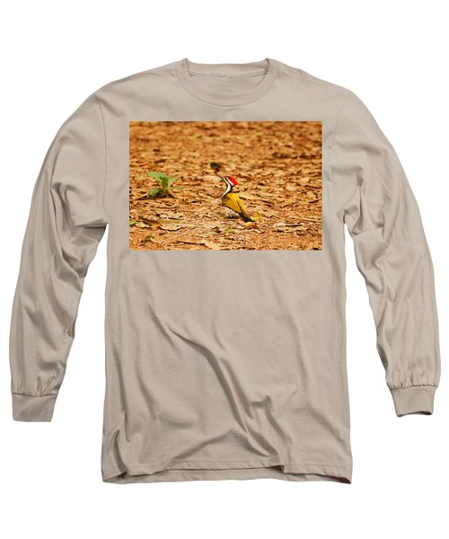 Long Sleeve T-Shirt featuring the photograph Golden Backed Woodpecker by Fotosas Photography