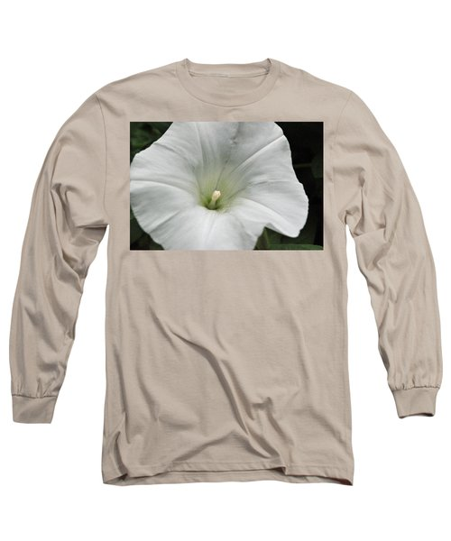 Long Sleeve T-Shirt featuring the photograph Hedge Morning Glory by Tikvah's Hope
