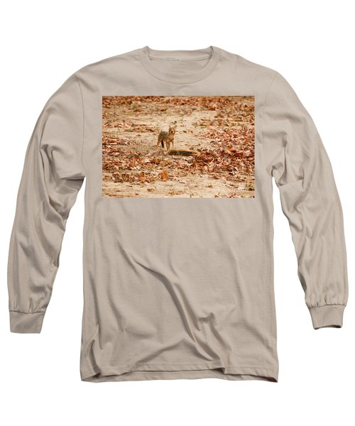 Long Sleeve T-Shirt featuring the photograph Jackal Standing Over Deer Kill by Fotosas Photography