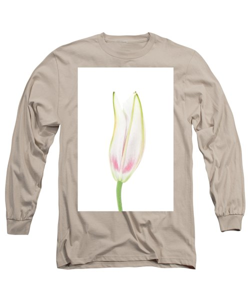 Lily In The Snow Long Sleeve T-Shirt