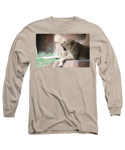 Lion At Brookfield Zoo In Chicago Il Long Sleeve T-Shirt