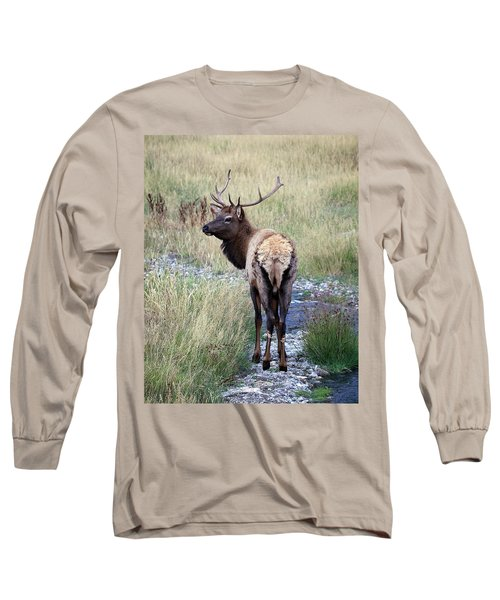 Looking Back Bull Long Sleeve T-Shirt by Steve McKinzie
