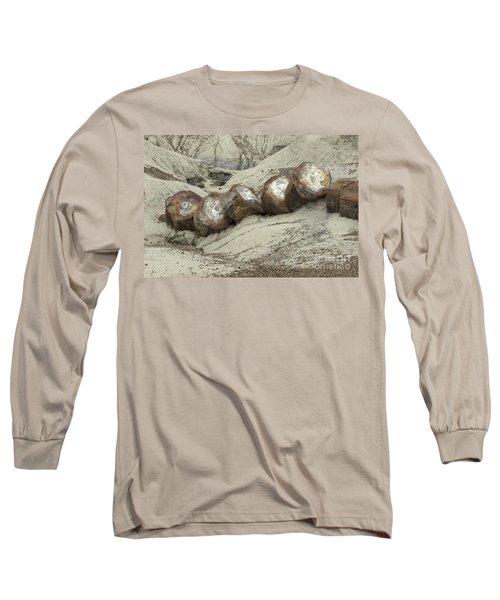 Petrified Forest 1 Long Sleeve T-Shirt