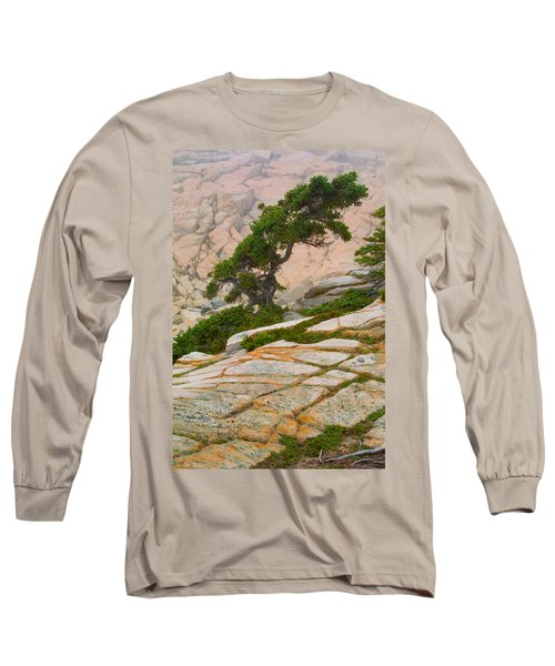Schoodic Cliffs Long Sleeve T-Shirt by Brent L Ander
