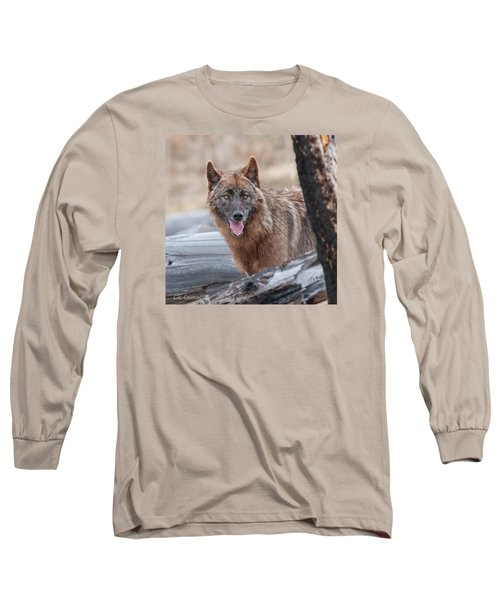 The Lone Wolf Long Sleeve T-Shirt by CR  Courson