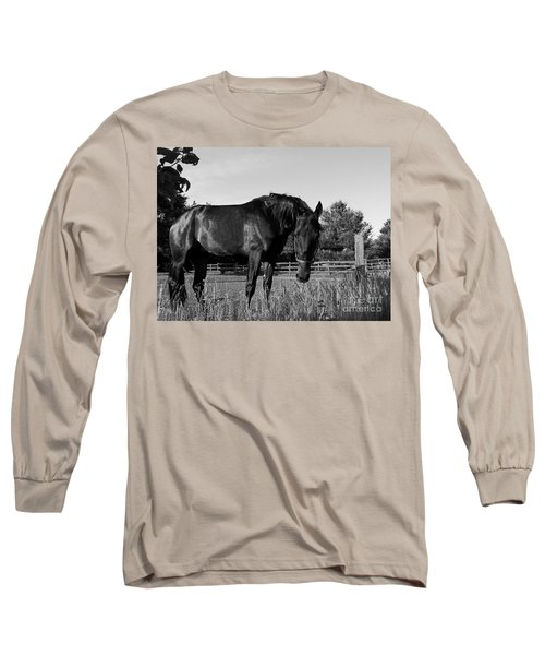 Long Sleeve T-Shirt featuring the photograph The Stallion by Davandra Cribbie