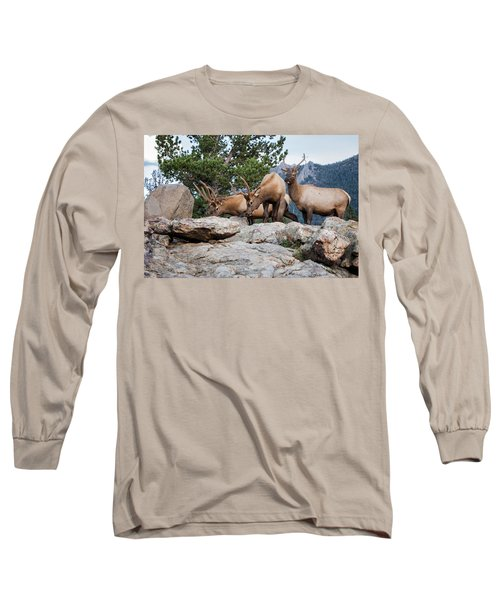 Wapiti Long Sleeve T-Shirt by Ronald Lutz