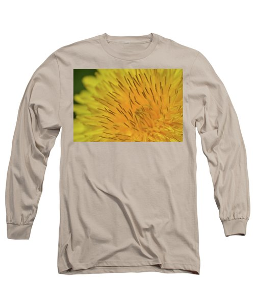Long Sleeve T-Shirt featuring the photograph Yellow Beauty by JD Grimes