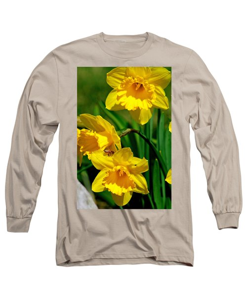 Long Sleeve T-Shirt featuring the photograph Yellow Daffodils And Honeybee by Kay Novy