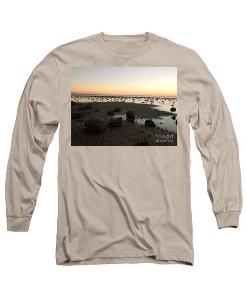 Beach Rocks Barnacles And Birds Long Sleeve T-Shirt