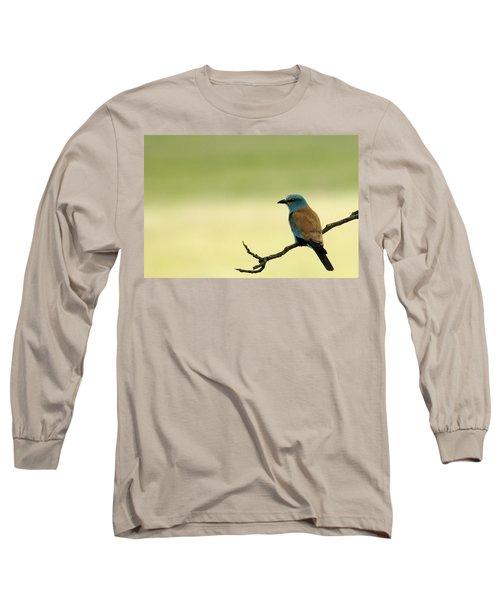 European Roller Long Sleeve T-Shirt