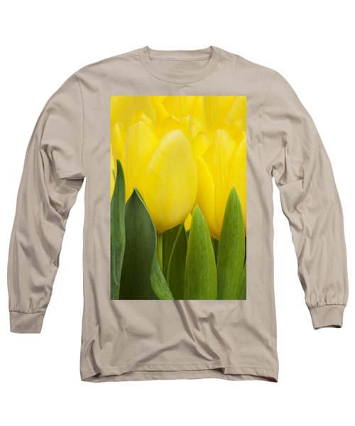 Spring Yellow Tulips Long Sleeve T-Shirt