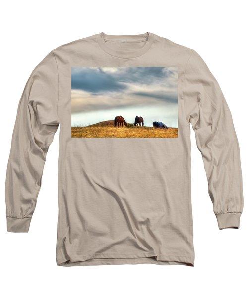 A Palouse Landscape Long Sleeve T-Shirt by David Patterson