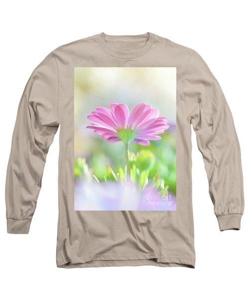 Beautiful Daisy Flower Long Sleeve T-Shirt