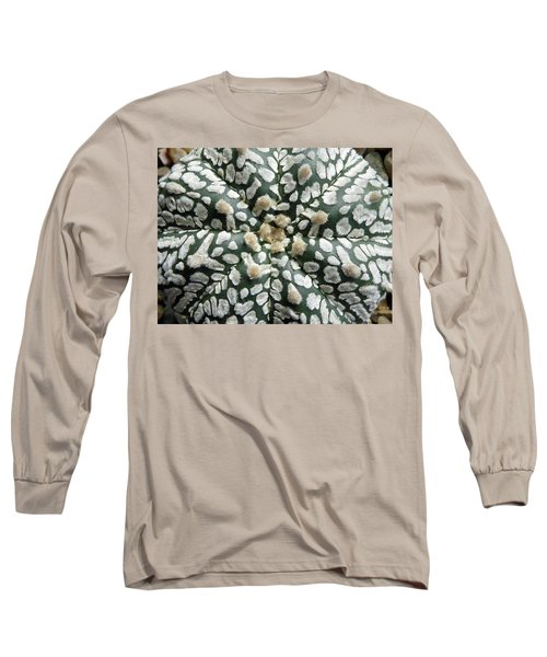 Cactus 1 Long Sleeve T-Shirt by Selena Boron