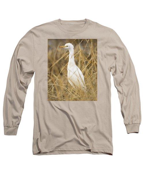 Cattle Egret Long Sleeve T-Shirt by Doug Herr