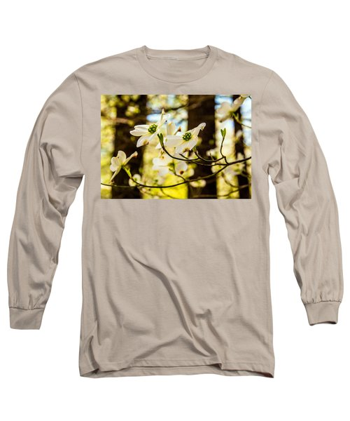 Dogwood Day Afternoon Long Sleeve T-Shirt by John Harding