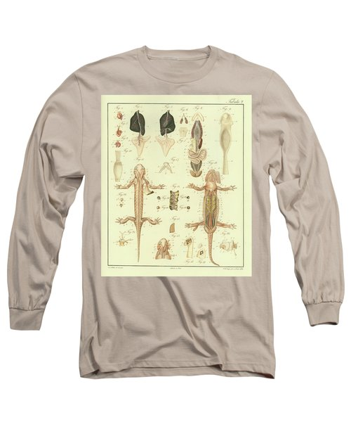 Fire Salamander Anatomy Long Sleeve T-Shirt