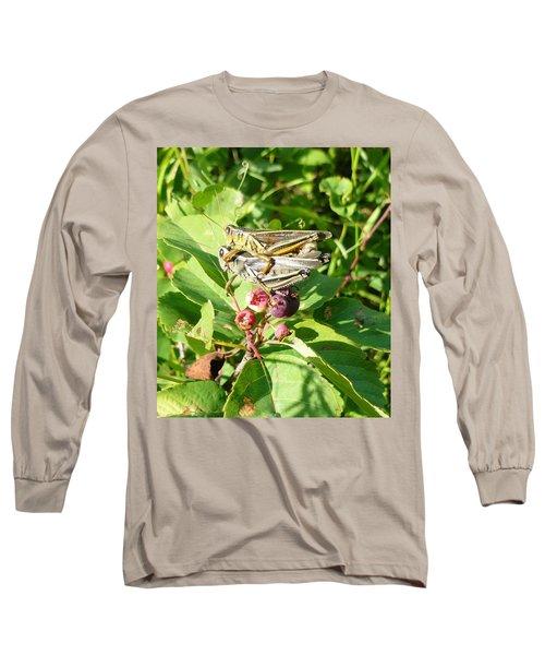 Grasshopper Love Long Sleeve T-Shirt