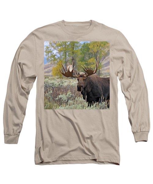 Handsome Bull Long Sleeve T-Shirt